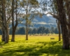 Explore the Southern Highlands from Bundanoon